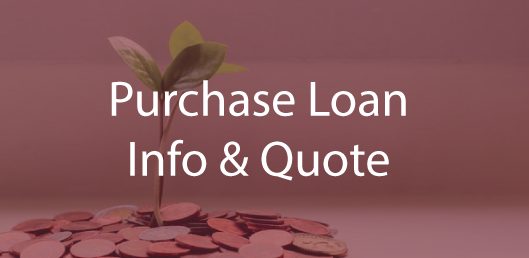 Purchase Loan Info